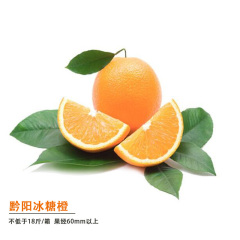 湖南黔阳冰糖橙2019尝鲜组