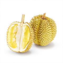 泰国 进口金枕头榴莲非猫山王托曼尼巴掌榴莲 新鲜水果 生鲜 坏果包赔
