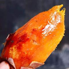 【新鲜果蔬】新鲜红薯 山东烟薯25号地瓜 5斤装(单果 2-8两)
