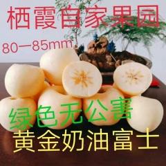 【峻农果品】烟台栖霞黄金奶油富士苹果80--85mm优质果12个6斤装包售后包邮