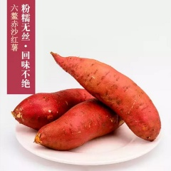 正宗福建漳浦六鳌沙地红薯 自家新鲜红心地瓜 好吃无公害 5斤中果包邮