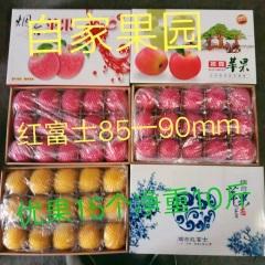 【峻农果品】烟台栖霞红富士苹果85--90mm优质果15个净重10斤包售后包邮