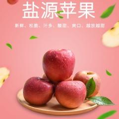 【新鲜水果】顺丰包邮 四川大凉山盐源丑苹果 8斤装 (70-80果)