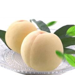 【新鲜水果】山东蒙阴特产白桃 4.5斤 单果约150g
