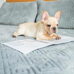 一默乳胶床褥乳胶枕床垫自发热乳胶床垫床褥子自发热褥子榻榻米