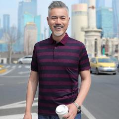 夏季t恤男士短袖翻领中年男士爸爸装宽松半袖体恤Polo衫条纹上衣