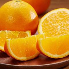 【橙中皇后】湖北秭归伦晚脐橙   5斤  产地直发  包邮