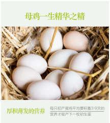 边走边淘 安徽阜阳树林散养初生鸡蛋 20个  包邮