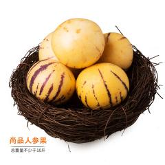 云南石林尚品人参果养生组