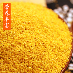 陕北米脂小米 农家月子米 养胃养颜 现磨现发 5斤装包邮