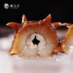 大连鑫玉龙辽参家庭组