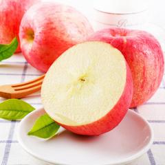 善食源红富士苹果5斤装